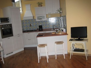kitchen area - love the disguised dishwasher and ice box