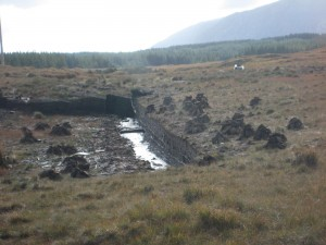 Peat bogs: source of heat and former major revenue for Ireland