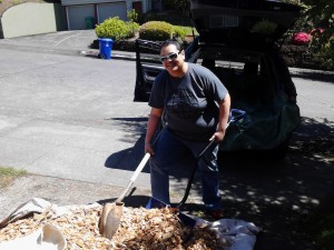 Yes - we moved cedar chips in our Pontiac Vibe